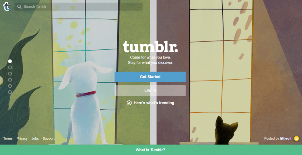 How to Blog on Tumblr